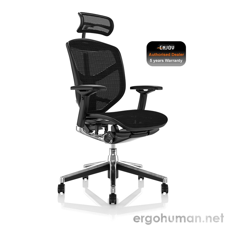 Enjoy Mesh Ergonomic Office Chairs